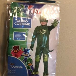 Gecko Boy Halloween/Dress up Costume